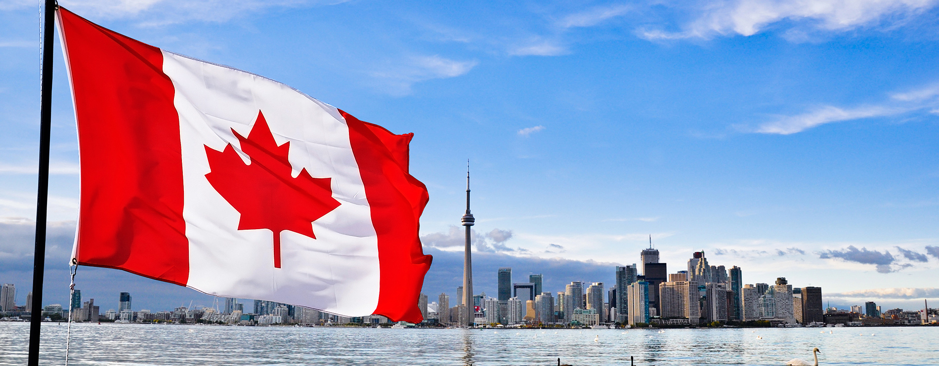Canadian immigration banner hillfield canadian immigration services - Bureau immigration canada ...